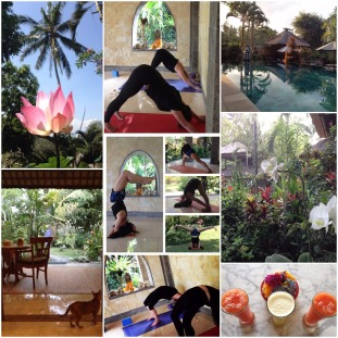 Bali Yoga #2 2016
