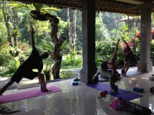 Asana in the Jungle